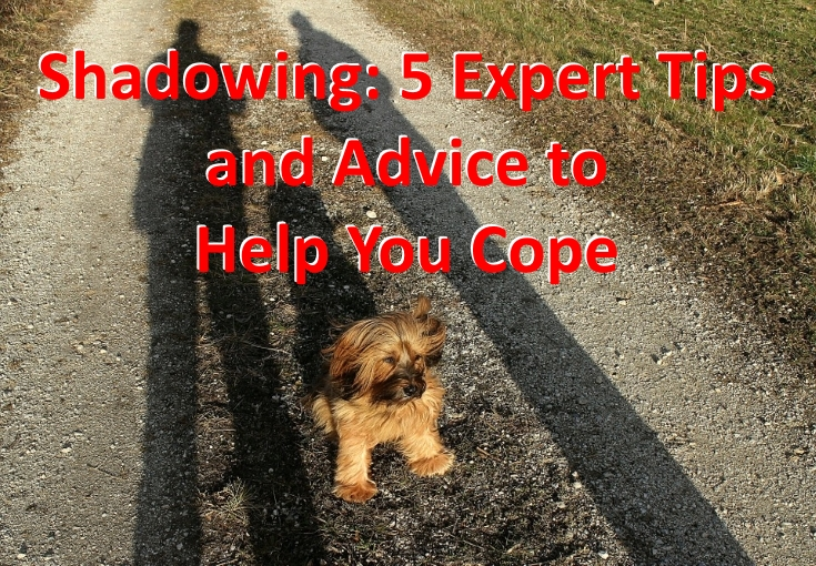 Shadowing: 5 Expert Tips and Advice to Help You Cope